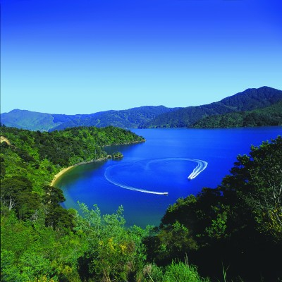 Marlborough Sounds view from above